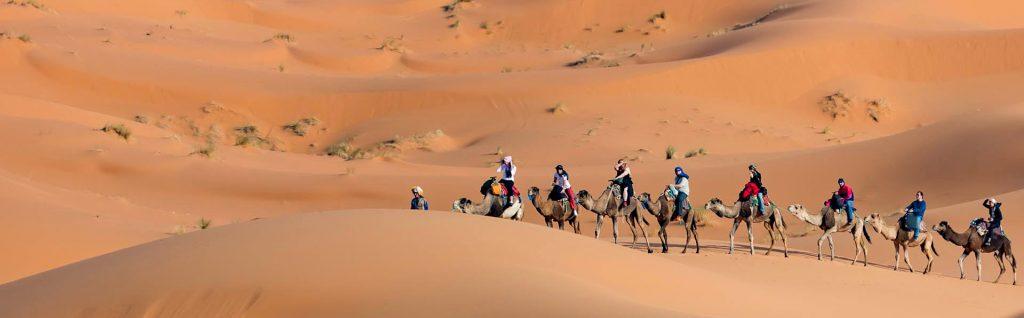 Excursión al desierto desde Marrakech