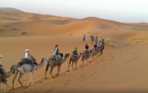 Excursión al desierto desde Fez compartir viaje por marruecos